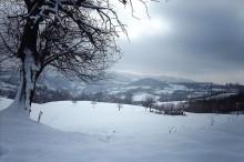 Desivojca. Photo by Durim Shkodra.