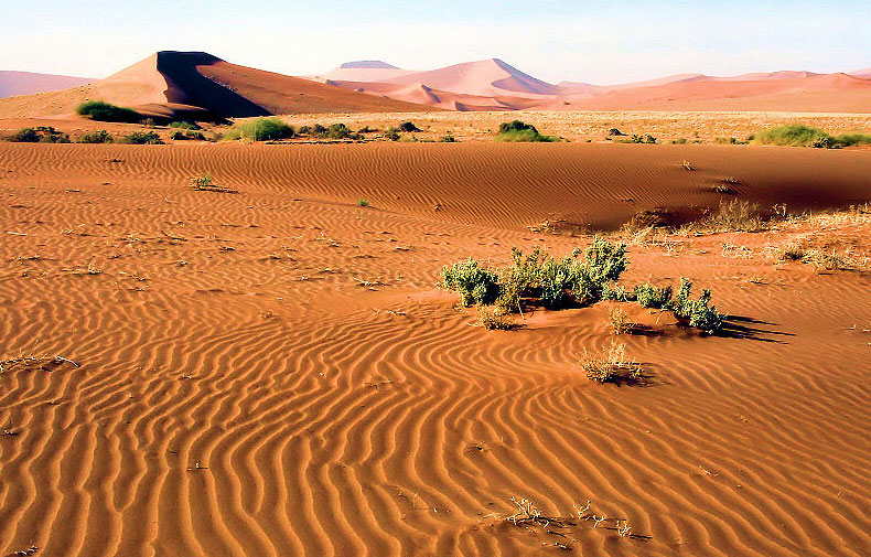 Ancient dunes from the Namib-Naukluft Park in Namibia, Africa. Photo by Bjørn Christian Tørrissen.
