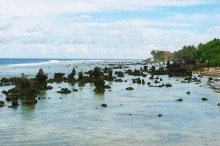 Coral reef on the beach in Nauru. Photo by D-Online