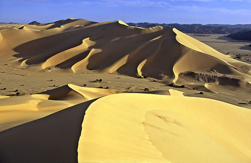 Dunes de Temet. Photo by Jacques Taberlet.