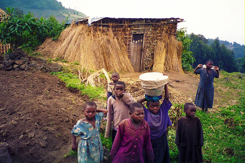 Children on a farm in Rwanda. Photo by Sarel Kromer.
