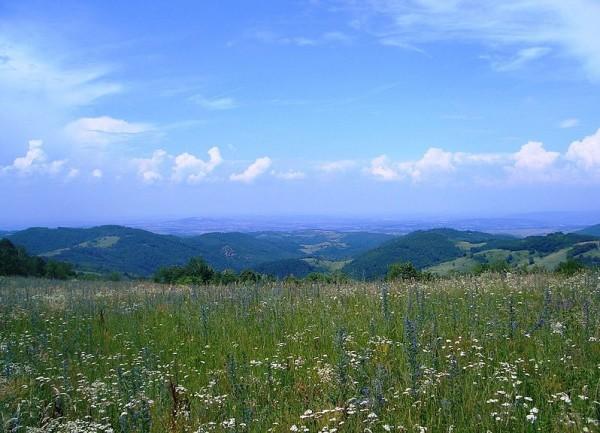 Šumadija. Photo by Струјајое.