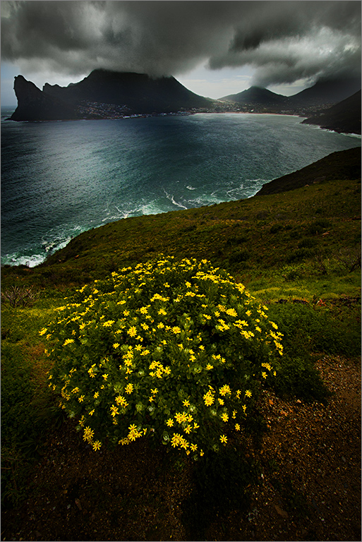 Chapman's Peak is a mountain and famous drive on the western side of the Cape Peninsula, 15 km south of Cape Town, South Africa. Photo by Hein Waschefort.