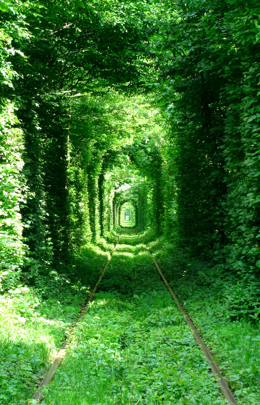 """Tunnel of Love"" in Rivne, Ukraine - by serhei"