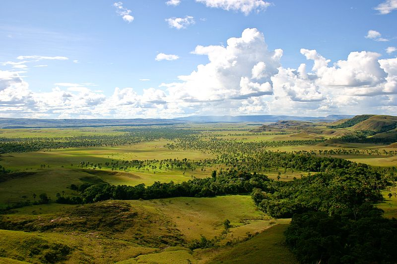 La Gran Sabana (Venezuela). Photo by Inti.