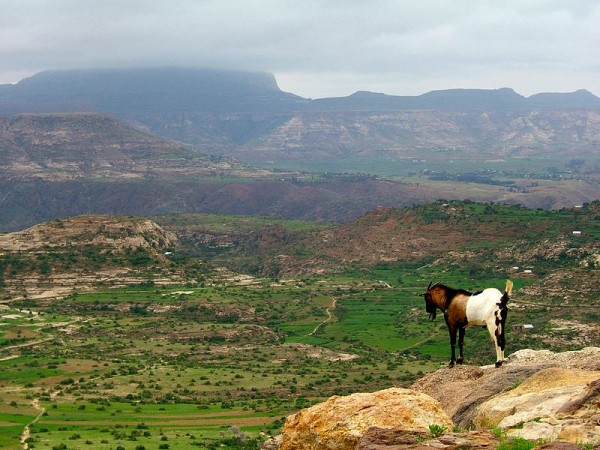 Ethiopian Highlands by Andro96.