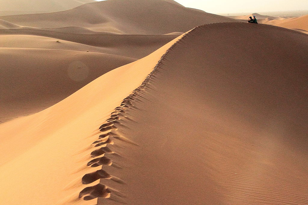 Moroccan Sand Dunes by Jamou.